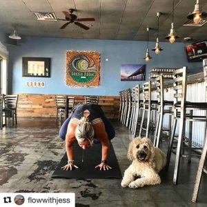 Pints and Poses for Pups