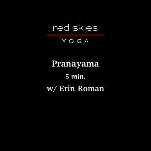 Pranayama II (5 min.)
